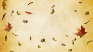 falling_leaf_still_2_-_hd